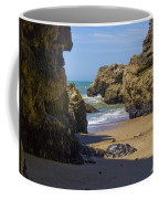 Pt Reyes National Seashore Coffee Mug by Bill Gallagher