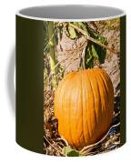Pumpkin Growing In Pumpkin Field Coffee Mug