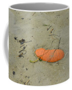 Pumpkin In The Sand Coffee Mug