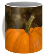 Pumpkin Macro 4 A Coffee Mug