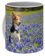Pup In The Bluebonnets Coffee Mug