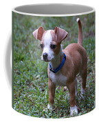 Puppy 2 Coffee Mug