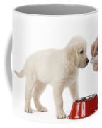 Puppy Receiving Medicine Coffee Mug