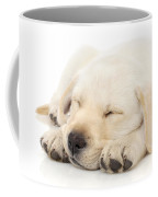 Puppy Sleeping On Paws Coffee Mug