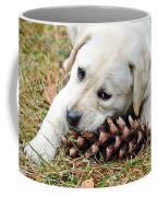 Puppy With Pine Cone Coffee Mug