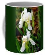 Purity In Pairs Coffee Mug