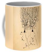Purkinje Cells By Cajal 1899 Coffee Mug