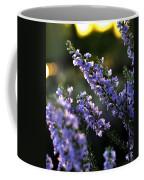 Purple 29987 Coffee Mug