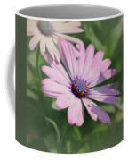 Purple African Daisy Coffee Mug