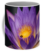 Purple And Bright Yellow Center Waterlily... Coffee Mug