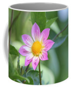 Purple And Yellow Dahlia Coffee Mug