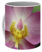 Purple And Yellow Orchid Coffee Mug