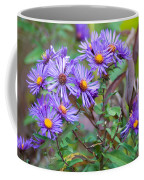 Purple Asters Coffee Mug