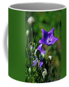 Purple Balloon Flower Coffee Mug