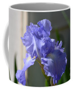 Purple Beauty Iris Coffee Mug