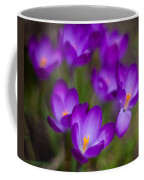 Purple Blanket Coffee Mug