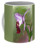 Purple Cattleya Orchid In Profile Coffee Mug