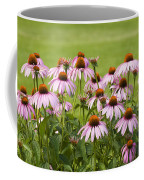 Purple Cone Flowers Coffee Mug