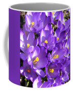 Purple Crocus Spring Welcome Coffee Mug
