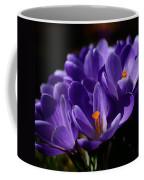 Purple Crocuses On A Spring Day Coffee Mug
