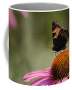Purple Echinacea Flower Coffee Mug