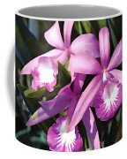 Purple Flock Of Cattleya Orchids Coffee Mug