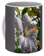 Purple Hibiscus Coffee Mug