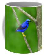Purple Honeycreeper Coffee Mug