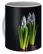 Purple Hyacinth Ready For Spring. Coffee Mug