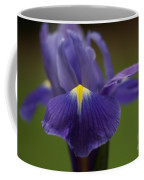 Purple Iris 6 Coffee Mug