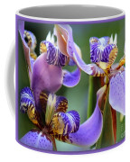 Purple Irises Closeup Coffee Mug