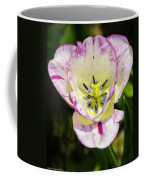 Purple Lace Tulip Time Coffee Mug