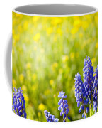 Blue Muscari Mill Bunches Of Grapes Close-up  Coffee Mug
