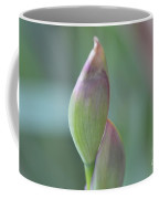 Purple N White Iris Buds Series Photo A Coffee Mug
