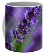 Purple Nature - Lavender Lavandula Coffee Mug