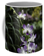 Purple Orchid Flower Inside The National Orchid Garden In Singapore Coffee Mug