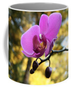 Purple Orchid In September Sun Coffee Mug