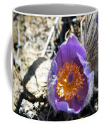 Purple Pan Gold Coffee Mug