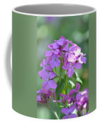 Purple Phlox Coffee Mug