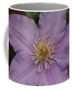 Purple Pleaser Coffee Mug