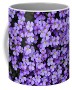 Purple Rockcress Coffee Mug