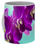Purple Trio - Orchids Coffee Mug