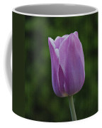 Purple Tulip Coffee Mug