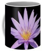 Purple Water Lily Coffee Mug
