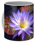Purple Waterlily With Fall Lilypads Coffee Mug