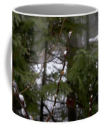 Pussy Willow In The Pines Coffee Mug