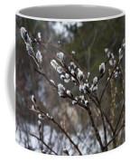 Pussy Willow In The Rain Coffee Mug