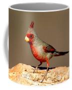 Pyrrhuloxia Cardinalis Sinuatus Male Coffee Mug