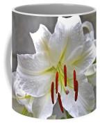 Qcpg 13-001 Coffee Mug