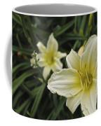 Qcpg 13-006 Coffee Mug